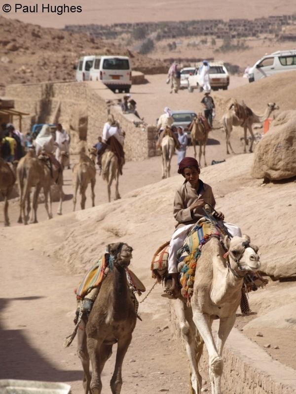 image of boy on camel