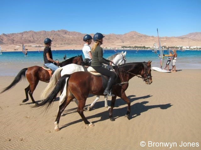 Image of horseriding
